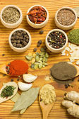 Powder spices — Stock Photo