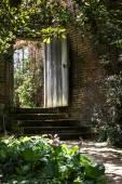 Garden steps to a solid wooden door — Stock Photo