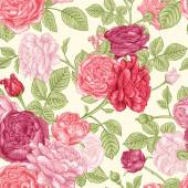 Pattern with pink roses — Stock Vector