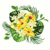 Bouquet of tropical flowers. — Stock Vector
