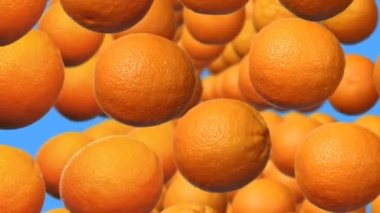 Oranges In Rows — Stockvideo