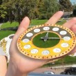 Woman Holding Flower Clock — Stock Video #69740459