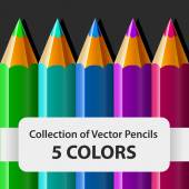 CollectionVectorPencil — Stockvector