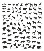 Collection of wild vector animals — Stock Vector