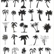 Vector silhouettes of palm trees — Stock Vector #57586503