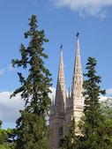 Basílica Nuestra Señora de Luján, Buenos Aires, Argentina — Stockfoto