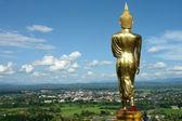 Buddha standing golden — Stock Photo