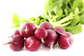 Group of red radishes — Stock Photo