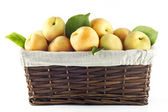 Apricots with basket — Stock Photo