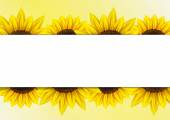 Sunflower vector background — Stock Vector