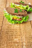 Two sandwiches with smoked salmon — Foto de Stock