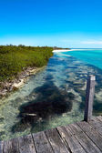 View of Sian Ka'an Biosphere Reserve Mexico — Stockfoto