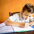 A young boy is doing homework — Stock Photo #65155265