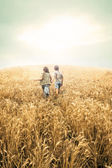 Children running into wheat to the sunset — Stock Photo