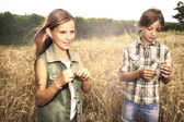 Young boys having fun in the wheat field — Stock Photo