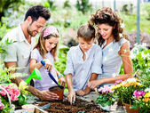 Family have fun in the work  of gardening — Stockfoto
