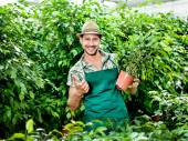 Farmer shows with passion his beloved plants and scores ok — Stock Photo