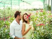 Couple have fun choosing flower pots in a greenhouse — Stock Photo