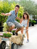 Giovani coppie che giocano con una carriola in una serra — Foto Stock