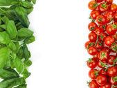 The Italian flag made up of fresh vegetables. Italian symbol — Stock Photo