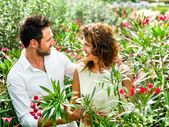 Couple flirting among the flowers in a greenhouse — Stock Photo