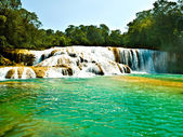 Aqua Azul waterfall in Chiapas Mexico — Stock Photo