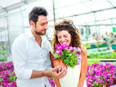 Couple have fun choosing flower pots in a greenhouse in spring — Stock Photo