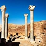 Jerash the roman old city in Petra Jordan — Stock Photo #66956695