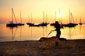 Girl running with her dog by the lake at sunset — Stockfoto