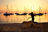 Girl running with her dog by the lake at sunset — Стоковое фото