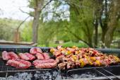 Delicious barbecue outdoors in nature — Stock Photo