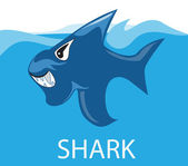 Angry shark in the sea — Stock Vector