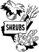 Shrubs — Stock Vector