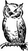 フクロウのウインク — ストックベクタ