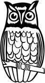 Owl On Branch — Stock Vector
