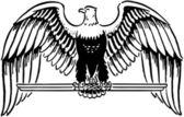 Aigle majestueux — Vecteur