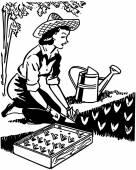 Woman Planting flowers into garden — Stock Vector
