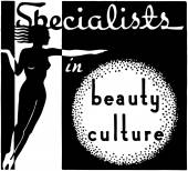 Specialists In Beauty Culture — ストックベクタ
