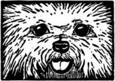 Furry Puppy Dog Face — Stock Vector