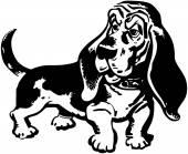 Basset Hound — Stock Vector