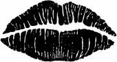 Luscious Lips — Stock Vector