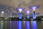 Gardens by the bay Supertree Grove and Singapore Flyer — Stock Photo