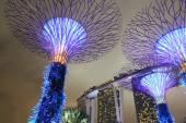 Supertree Grove and Marina Bay Sands Singapore — Stock Photo