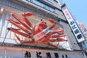 Kanidoraku in Dotonbori Osaka Japan — Foto de Stock