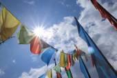 西藏旗 — 图库照片