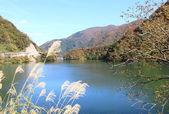 Lake Gokayama Japan — Stok fotoğraf