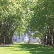 Melbourne Carlton Gardens — Stock Photo #58393079