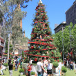 Christmas tree summer Melbourne — Stock Photo #58393275
