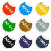 Vector DNA icon — Stock Vector