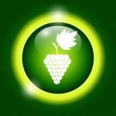 Grapes icon — Stock Vector